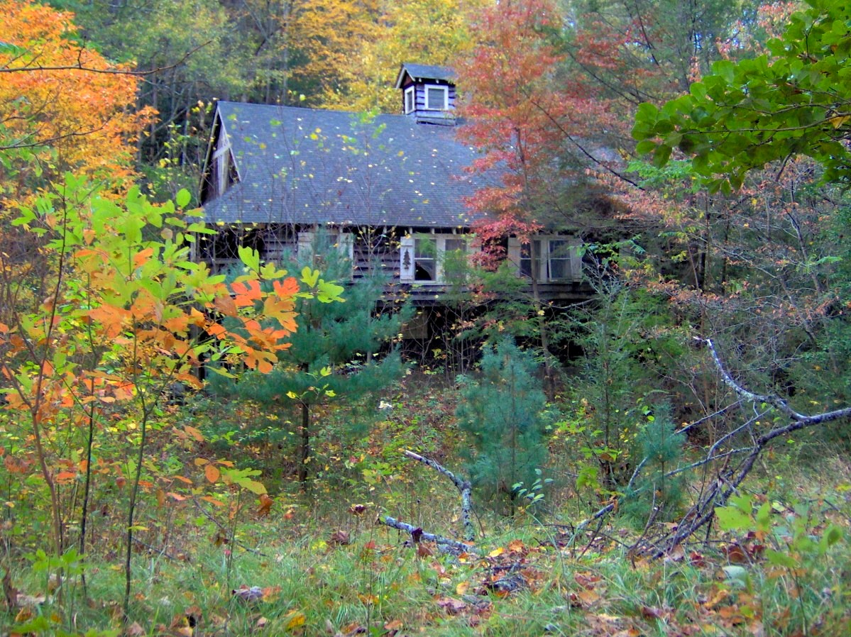 photo shows a small old cottage surrounded my autumn trees